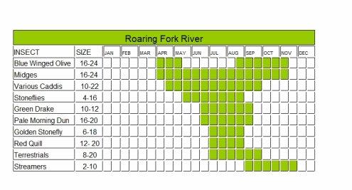 Roaring Fork River Fly Fishing